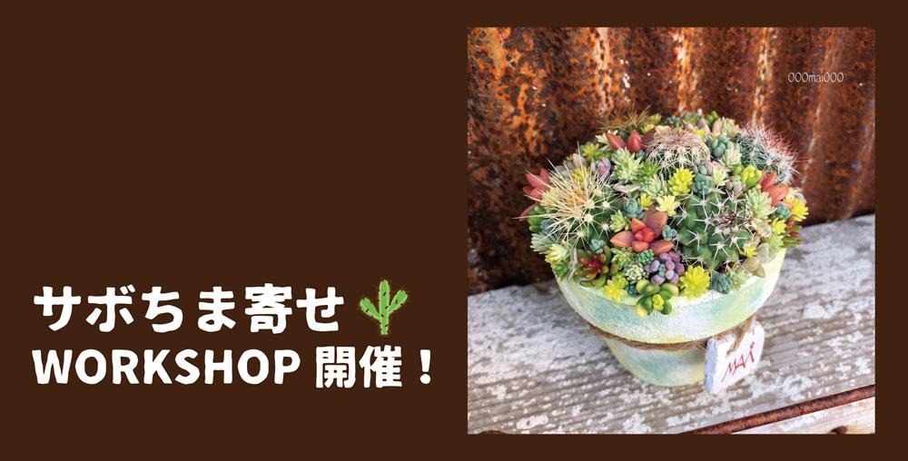 【8/27(火)】サボちま寄せ WORKSHOP開催!